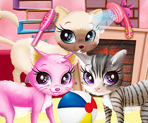 Kitty Pet Care Salon 300x250