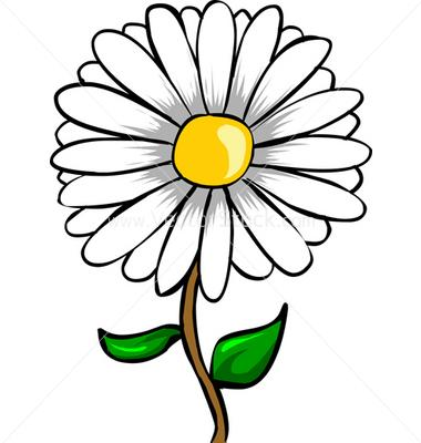 vectorstock-3022-daisy-flower-vector